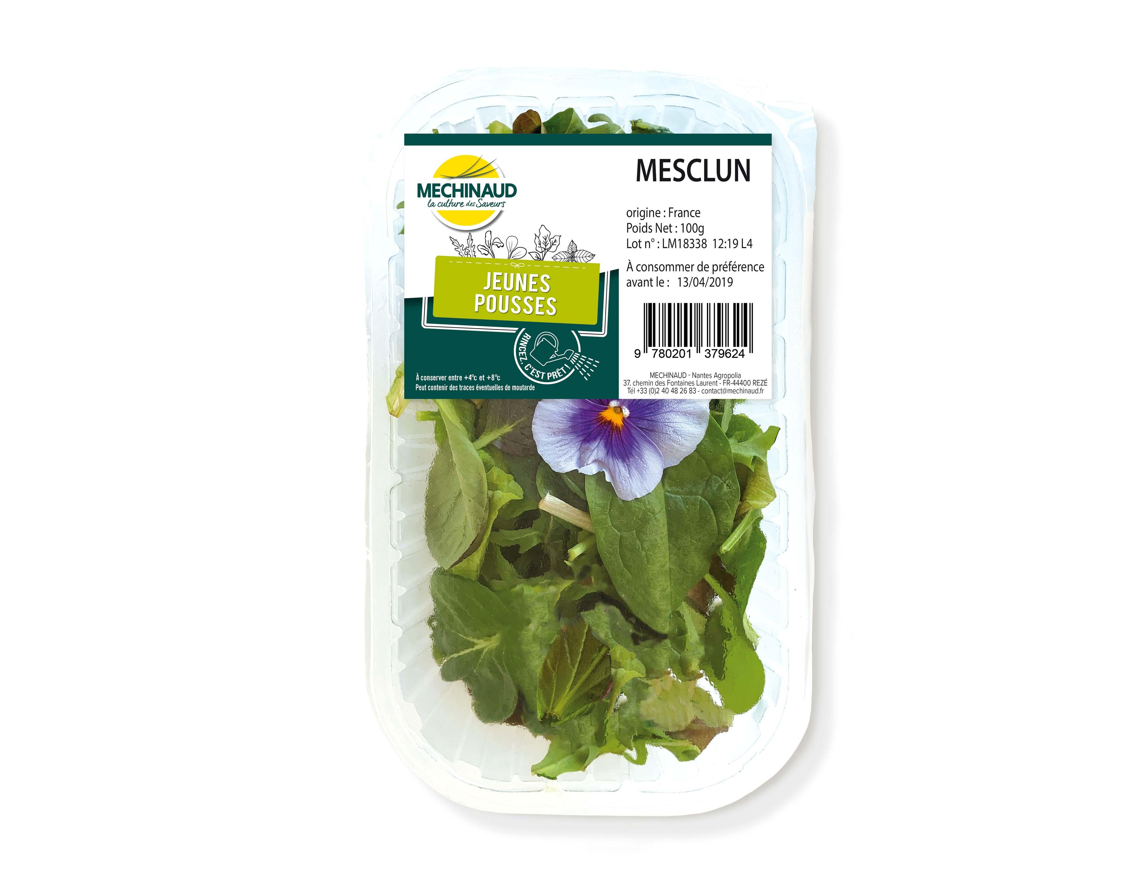 Mesclun Mechinaud